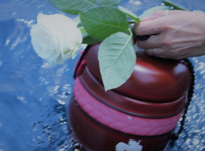 L'urne doit être biodégradable si plongée dans l'eau